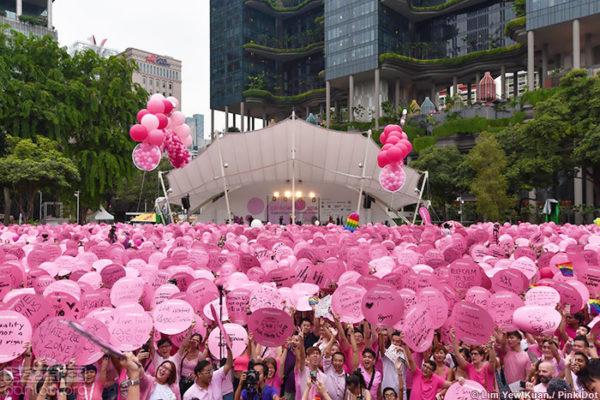 「新加坡粉紅點運動」的圖片搜尋結果
